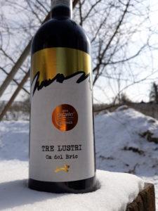 Ca del Bric - vini piemontesi - vigne d'inverno