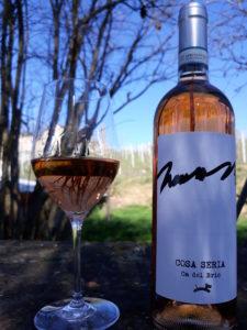 Ca del Bric - vini piemontesi - vigne in primavera